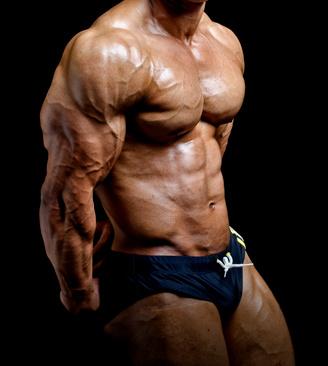 Muskelaufbau Ohne Fett Zu Werden